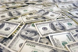 dolari