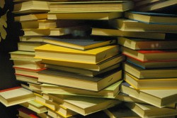 Topul celor mai furate cărți din librării