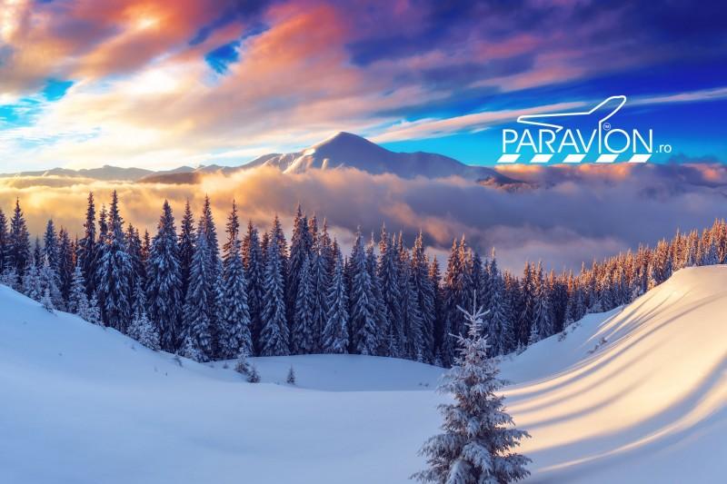 paravion-peisaj-de-vis-la-munte-iarna