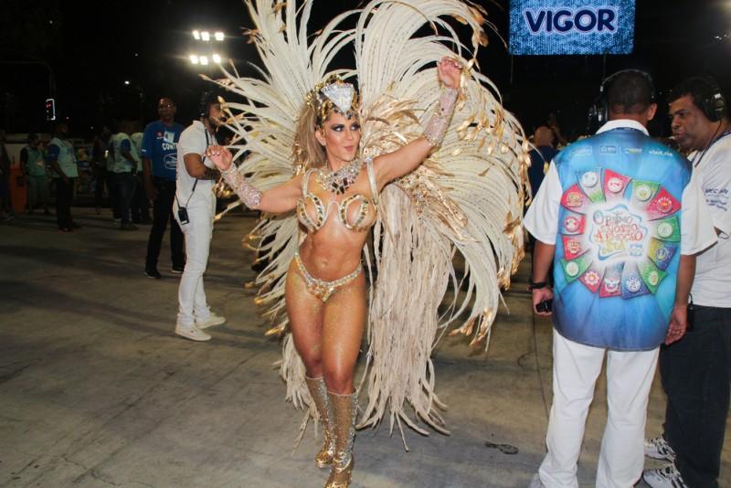 Carnaval Rio 2016 Andre Luiz Moreira  Shutterstock.com (7)