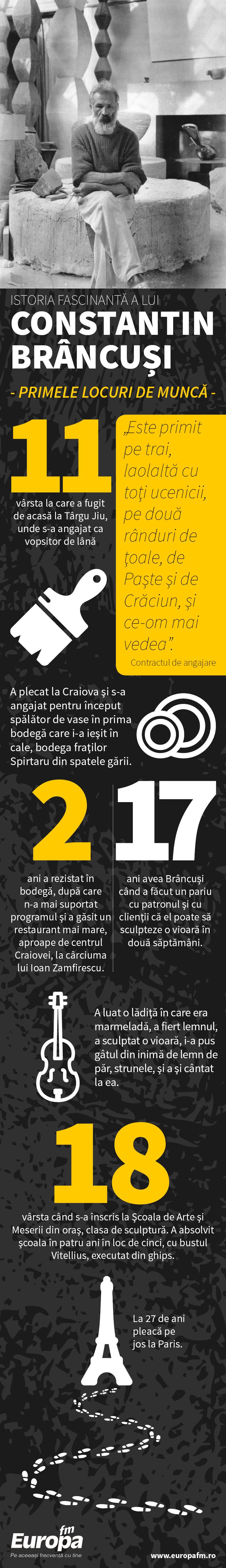 Infografie Brancusi