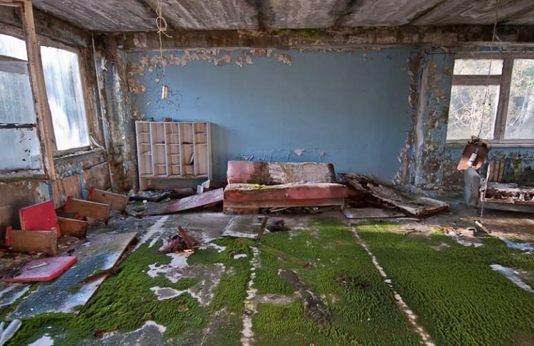 Pripyat la 30 de ani dupa tragedia de la Centrala Atomoelectrica Cernobil - camera cu muschi verde