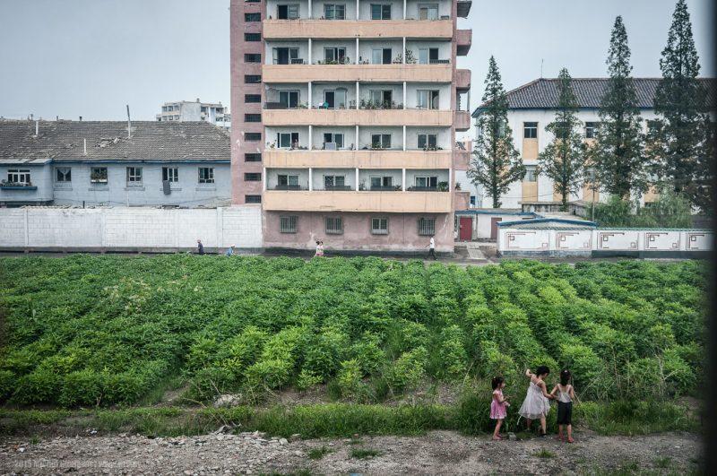 copii in coreea de nord