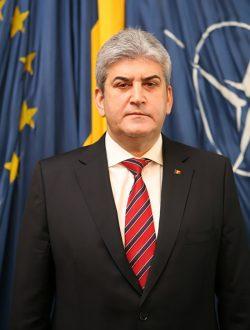 Comisie:Gabriel Oprea a plagiat în teza de doctorat