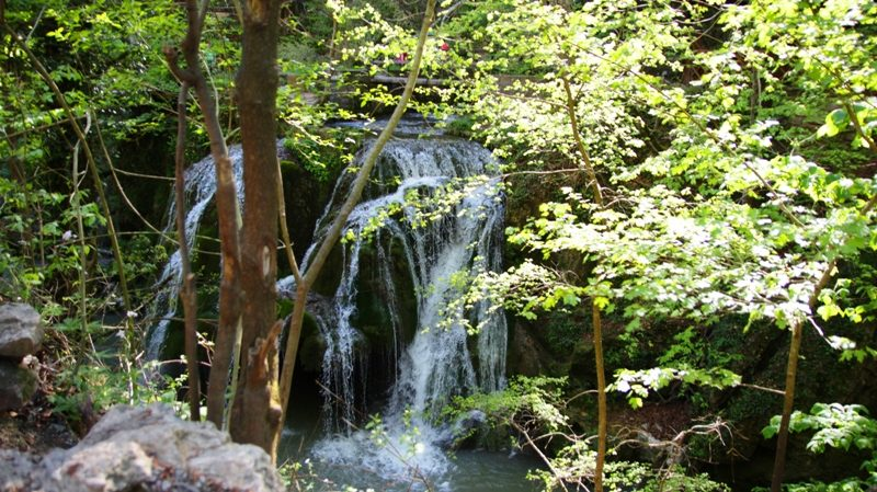 cascada bigar (2)