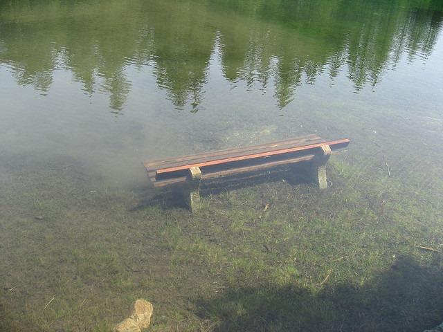 Gruner See (17)