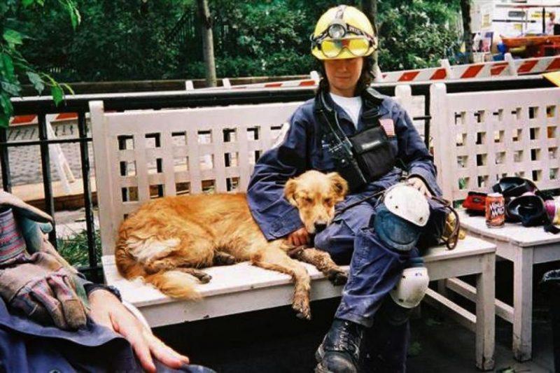caine erou 11 septembrie (4)