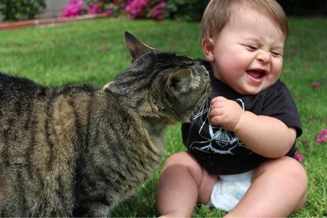 copiii si pisicile (11)