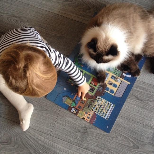 copiii si pisicile (14)