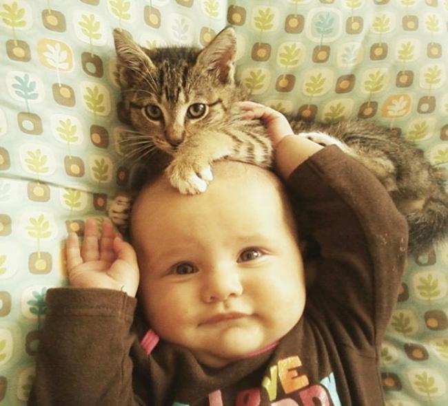 copiii si pisicile (6)