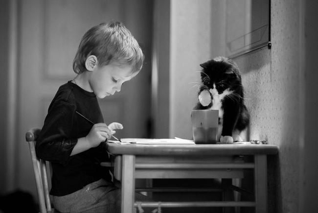 copiii si pisicile (8)