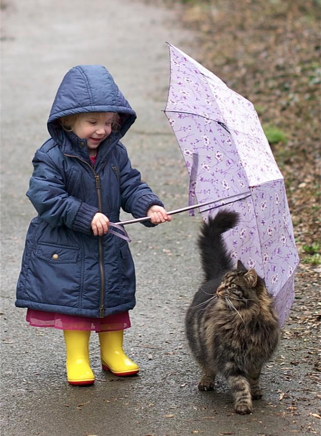 copiii si pisicile (9)