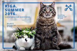 Două pisici, vedetele unei campanii de promovare a orașului Riga, capitala Letoniei