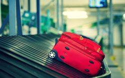 Patru senatori care au mers în Franţa au cerut decontarea taxei de 50 de euro pentru depăşirea greutăţii bagajelor (AUDIO)