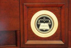 Curtea Constituțională dezbate sesizarile la OUG privind plagiatul