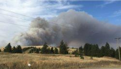 Incendiile forestiere activează starea de urgenţă în statul american Washington