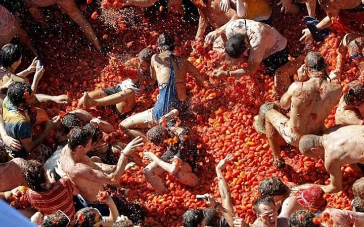 la tomatina (5)