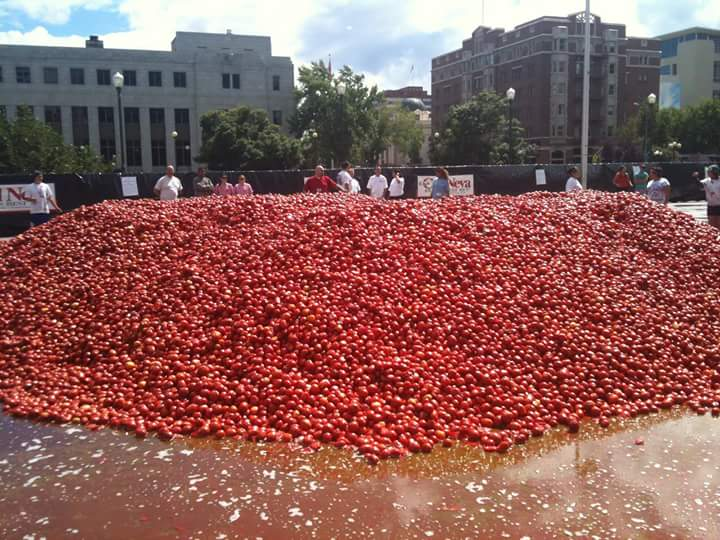 la tomatina (8)