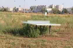Un parc din Ploiești în care s-au investit 17 milioane de euro, în paragină – GALERIE FOTO