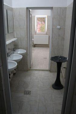În Botoşani se află satul cu cel mai scump WC din România (AUDIO)