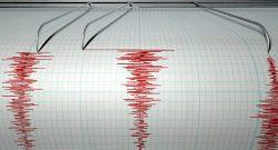 Reacţia autorităţilor la cutremurul din weekend