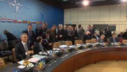 Marea Britanie, Polonia și Canada vor asigura Poliția Aeriană a Mării Negre