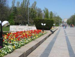 Republica Fantastică România: Licitație cu cântec de 22 de milioane de lei la Administrația Parcurilor din București – AUDIO