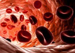 Sindromul hemolitic uremic atipic are la bază mutații genetice