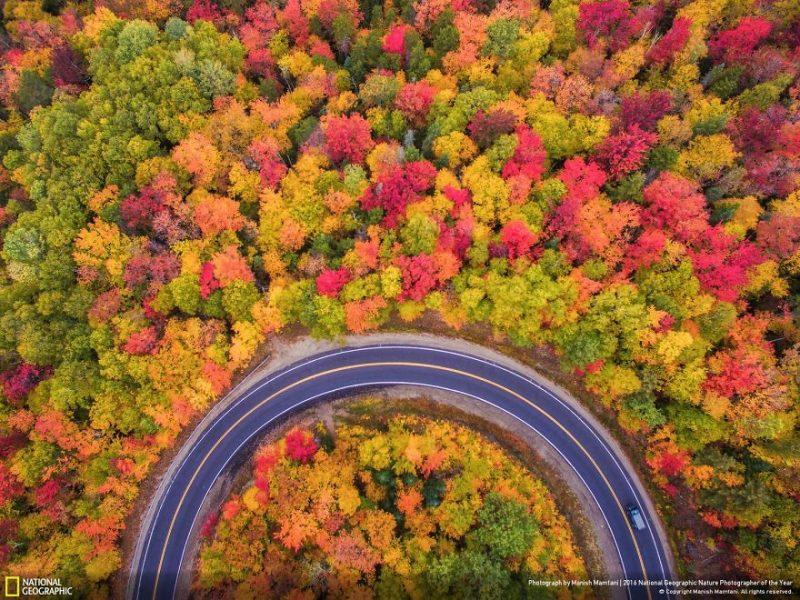 national-geographic-cei-mai-buni-fotografi-de-natura-ai-anului-2016-15