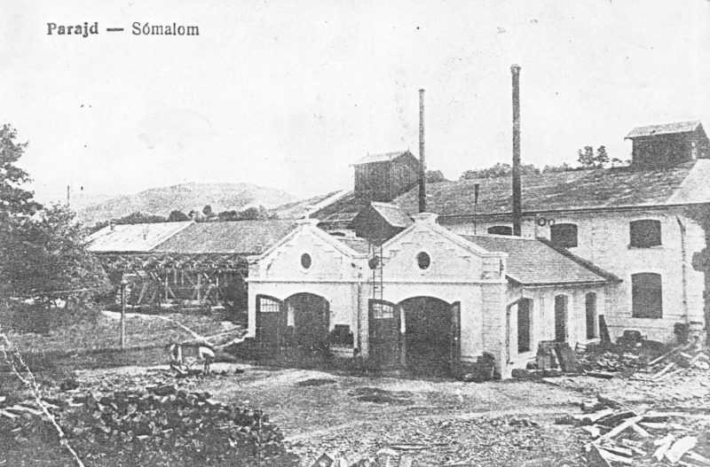 salina-praid-in-1918