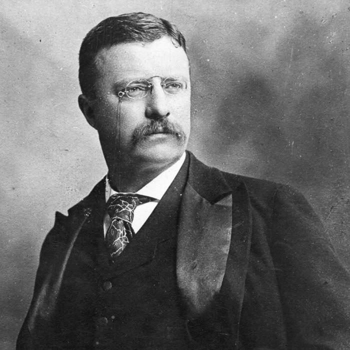 House of Trump – Învestirea lui Donald J. Trump ca ... Theodore Roosevelt Grant