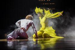 Varekai, spectacolul cu care Cirque du Soleil revine la București