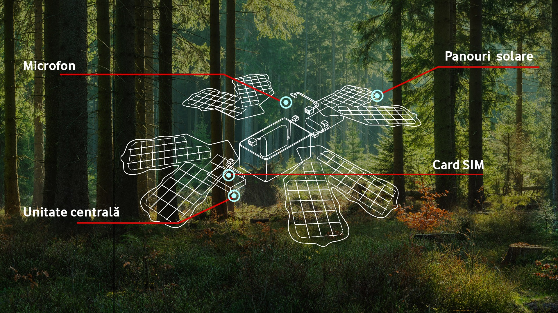 Soluția de pădure inteligentă implementată de Vodafone are la bază sistemul dezvoltat de start-up-ul non profit Rainforest Connection. Sistemul comunică cu rețeaua Vodafone și constă într-o serie de dispozitive numite gardieni digitali, prevăzute cu senzori acustici care captează o gamă variată de sunete din mediul înconjurător